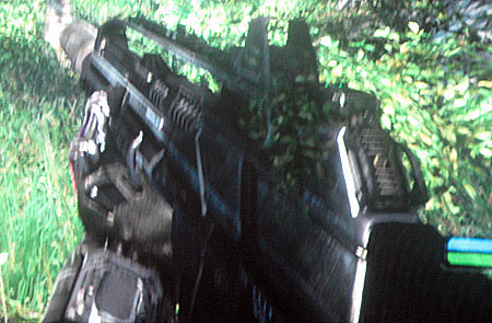 Example of crosstalk--notice some leaves can be seen through the gun